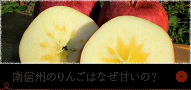 南信州のりんごはなぜ甘いの?